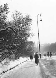 Vinterbilde fra Slottsbakken mot Karl Johans gate, Oslo.