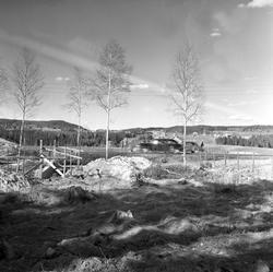 Serie. Ny motorvei fra Oslo til Gardermoen, ant. sett fra en