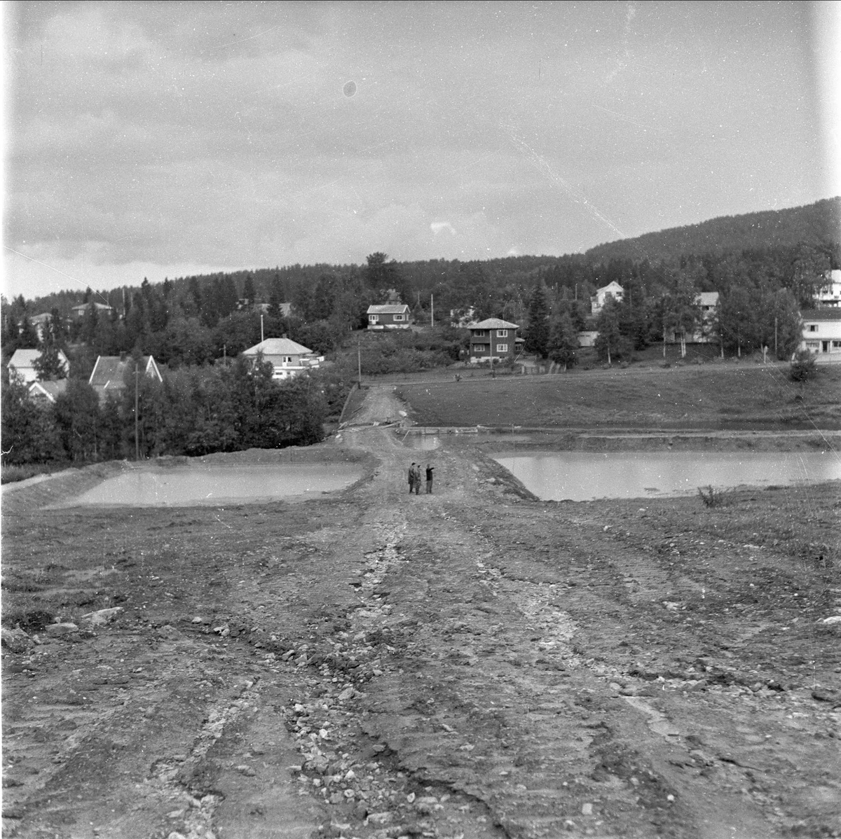 Ørretdammene i Lier, oppdrettsfisk, Buskerud, 01.08.1958