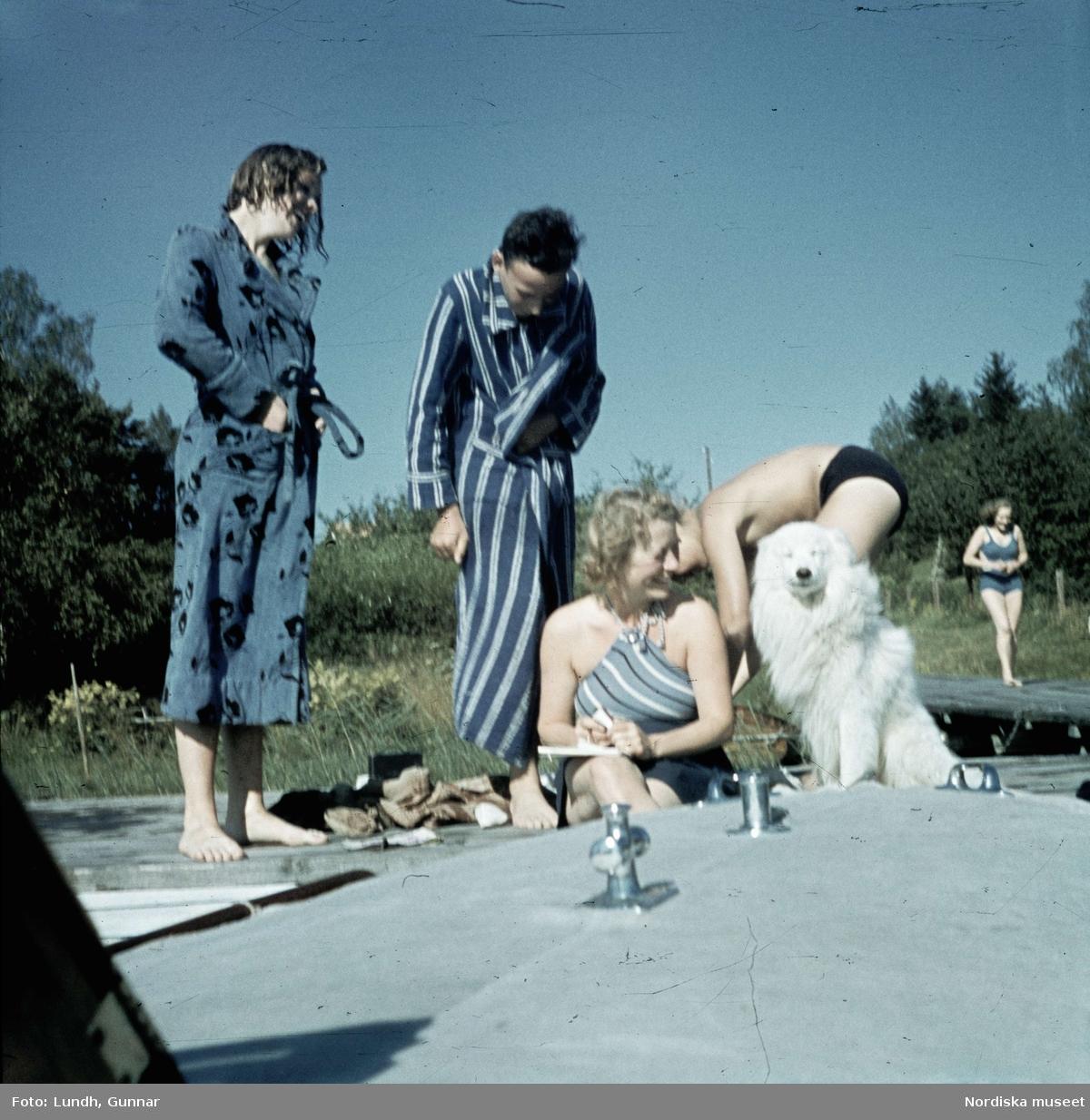 Badande sällskap med hund på en brygga. I förgrunden en båtstäv.