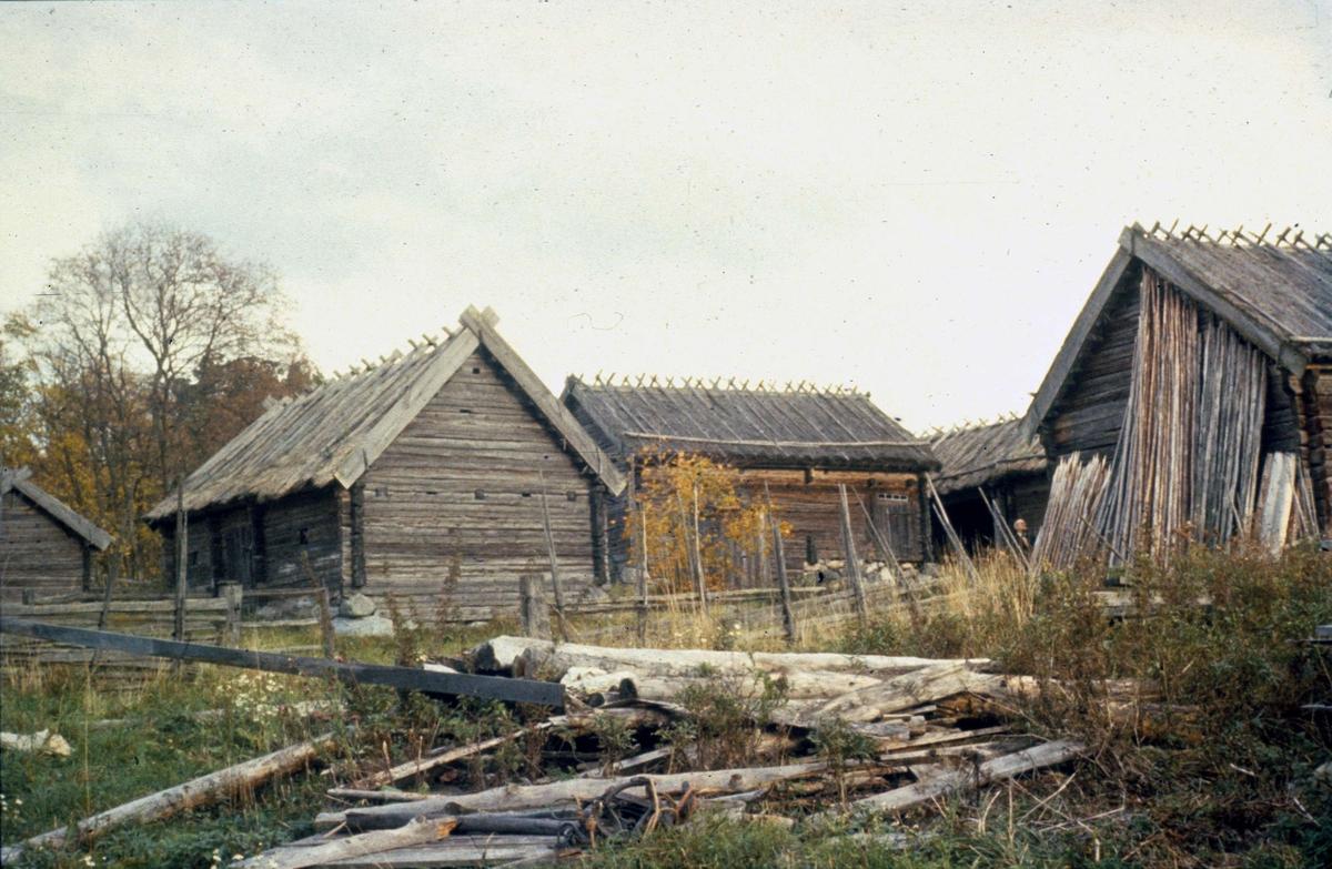 Ekonomibyggnader, Kvekgården, Fröslunda socken, Uppland 1958