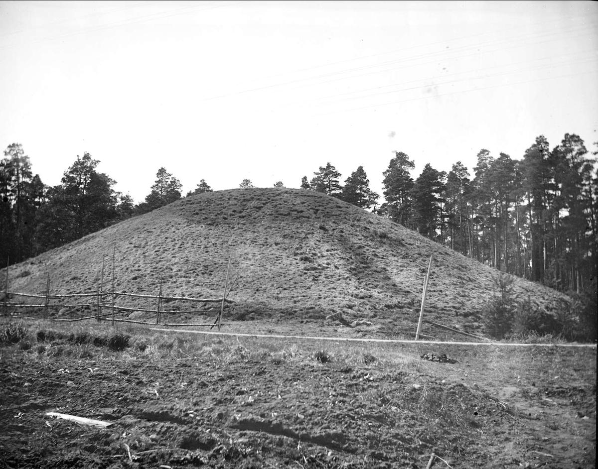 Ottarshögen i Vendels socken, Uppland april 1921