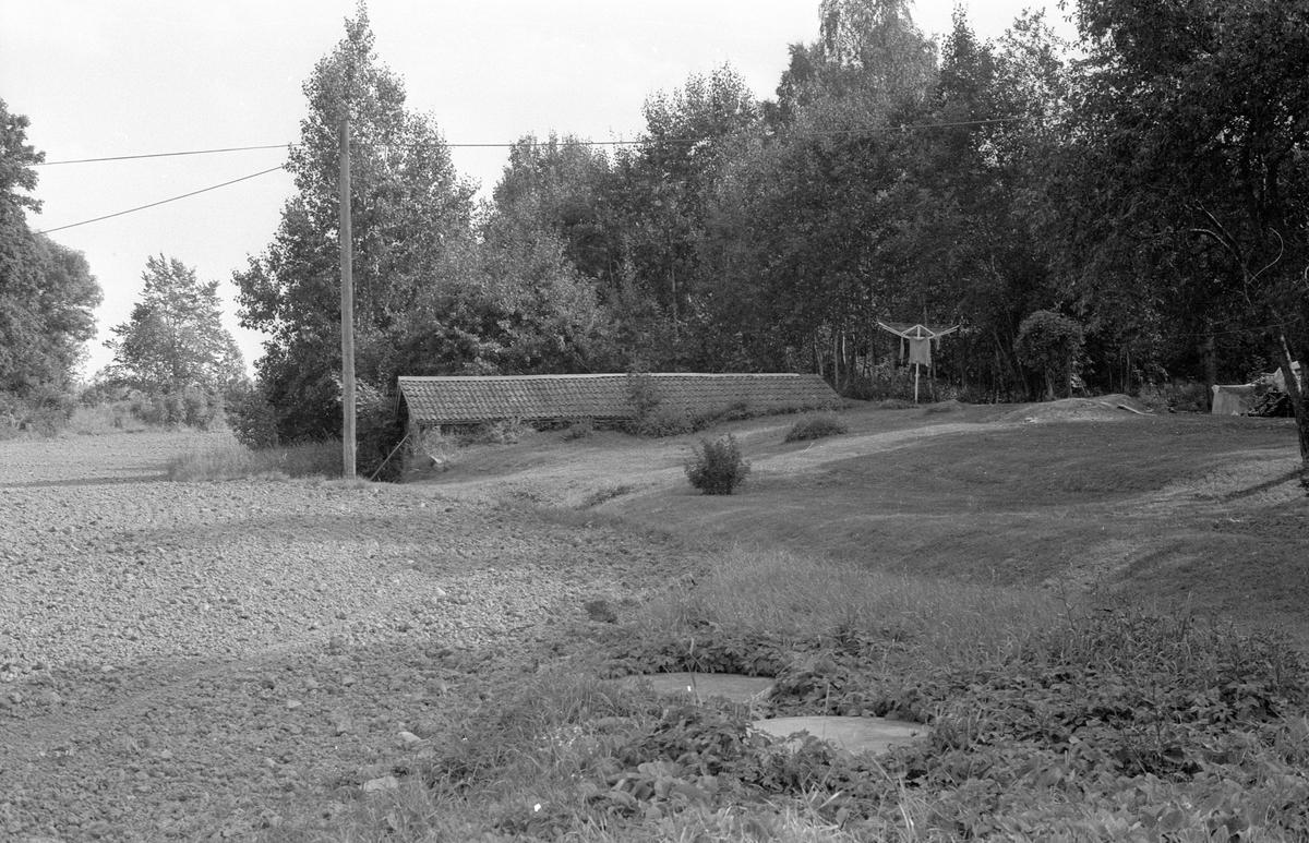 Källare, Agersta 2:2, Agersta, Jumkils socken, Uppland 1983