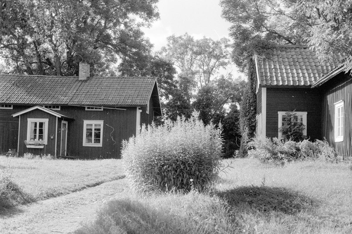 Brygghus och bostadshus, Norrgården, Gränsta, Knutby socken, Uppland 1987