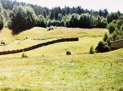 Laaang hesje Der Veste på Sveindal i Audnedal.
