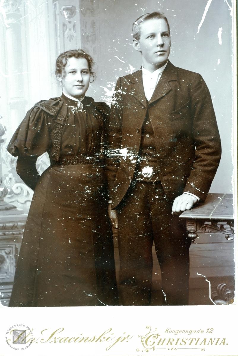Muligens brudebilde av Hanna og Olaf Seland. Grindheim Audnedal.