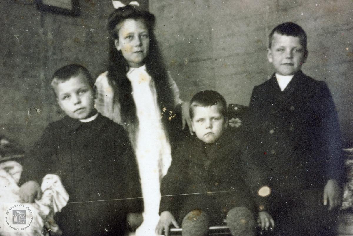 Portrett av fire søsken Håland. Grindheim Audnedal.