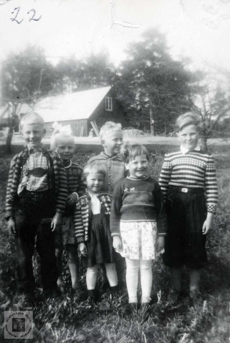 Søskenbarnsamling på Øvre Ågeda. Grindheim Audnedal.
