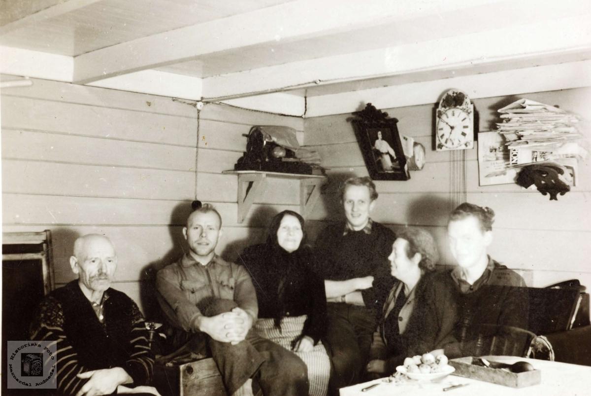 Portrett av personer i stua. Muligens fra Grindheimsområdet. Audnedal.