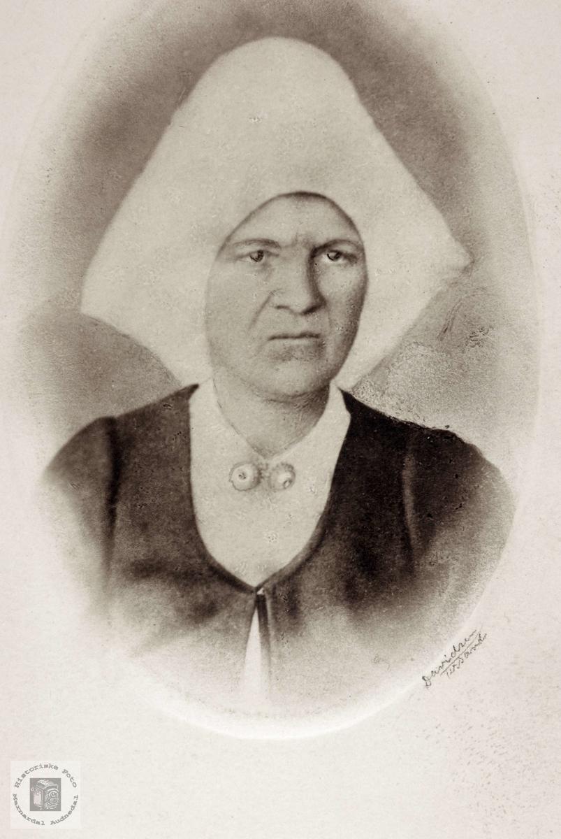 Portrett av lensmannsfrue Joran Høyland gift Refsnes. Grindheim Audnedal.