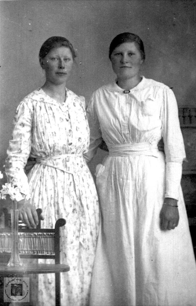 Portrett av to venniner, Berthine og Gurine Tomine Abelseth, Bjelland.