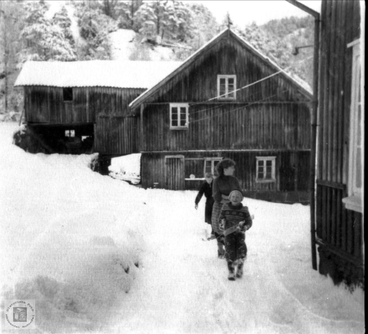 Gardstun i Verdalen, Laudal.