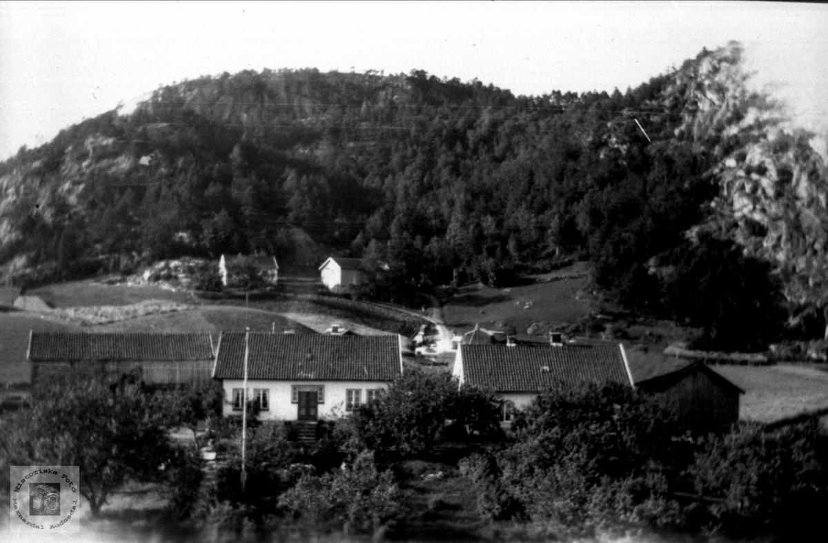 Nomegarden på Øyslebø.