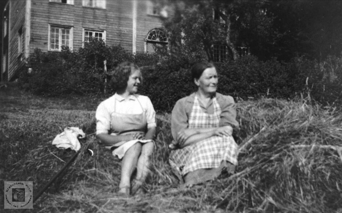 Kvinner i høyet. Anna og Gudny Finsdal, Øyslebø.