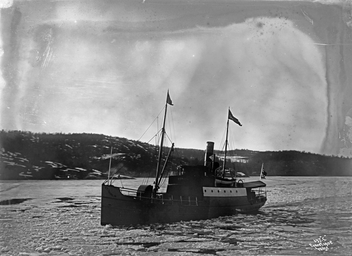 D/S Ternen (b. 1897, Thorskogs Mekaniska Verkstad, Gøteborg), Bundefjord i is