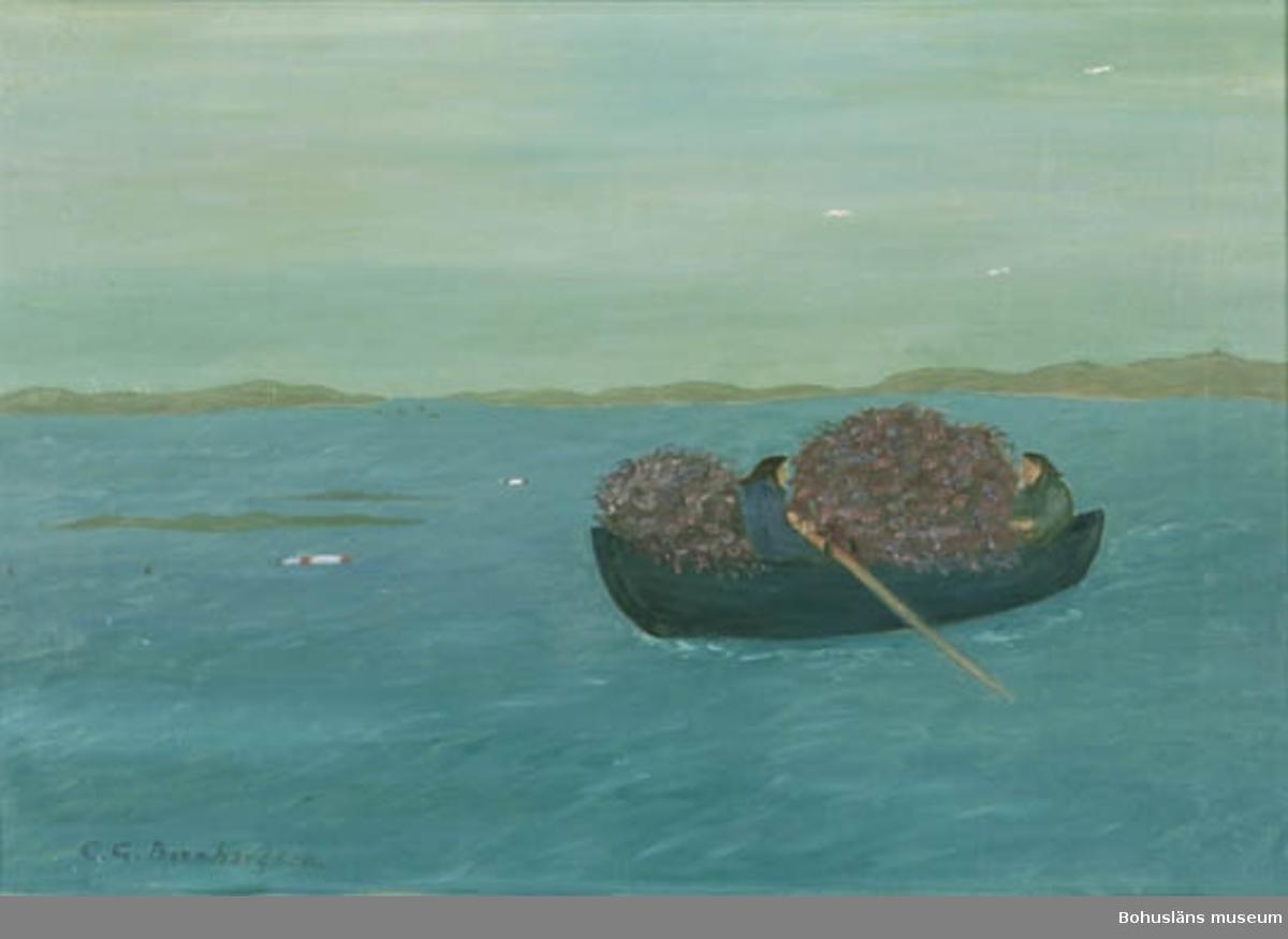 """Montering/ram: Ram. Baksidestext : """"Ljung  rycktes på holmar och Näs lastades och forslades i båtar till bak och värmebränsle i fiskarläge och strandsittareKojor så sent som fram till 1930.  Folklivsskildring Skaftö Bohuslän. C.G. Bernhardson"""".  Ordförklaring: Strandsittare = backstugusittare, fiskarebönder, hantverkare m.fl., vilka bodde på ofri grund eller t.ex. på allmäningar.  Litt.: Bernhardson, C.G.: Bohuslänskt folkliv, Uddevalla, 1982, s. 189. Titel i boken: Ljungfart.  Övrig historik; se CGB001."""