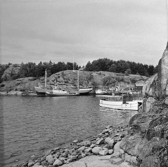 Fiskevik, Stora Askerön