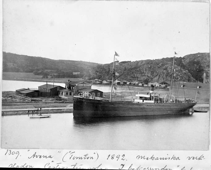 Ångskonerten AVENA år 1892.