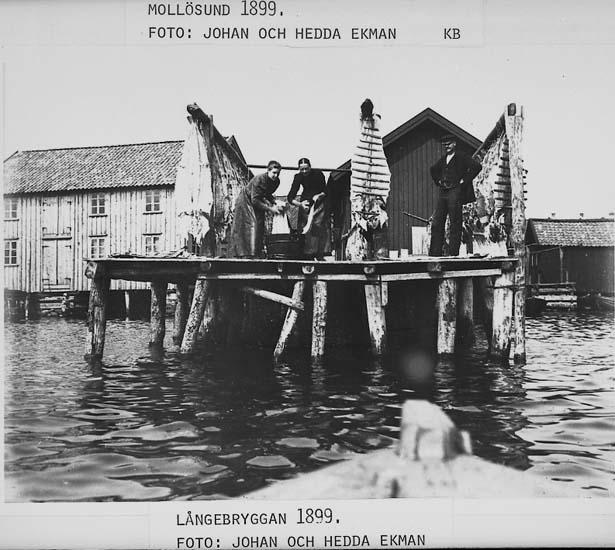 Långebryggan, Mollösund.