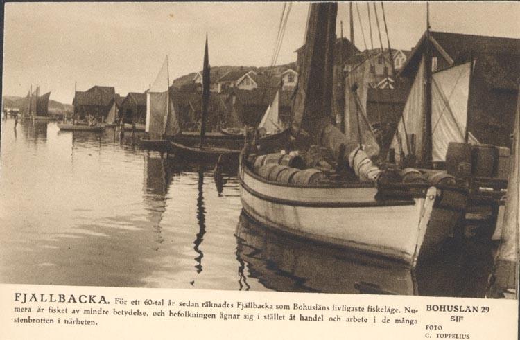 """Tryckt text på kortet: """"Fjällbacka. För ett 60-tal år sedan räknades Fjällbacka som Bohusläns livligaste fiskeläge. Numera är fisket av mindre betydelse, och befolkningen ägnar sig i stället åt handel och arbete i de många stenbrotten i närheten."""" """"C. TOPPELIUS."""" """"BOHUSLÄN 29 STF"""". """"SVERIGEBILDER SVENSKA TURISTFÖRENINGEN""""."""