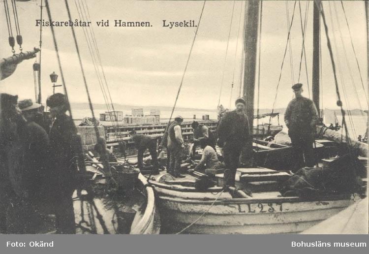 """Tryckt text på kortet: """"Fiskarbåtar vid Hamnen. Lysekil"""". """"WEGA CARLSSON, CIGARRAFFÄR""""."""