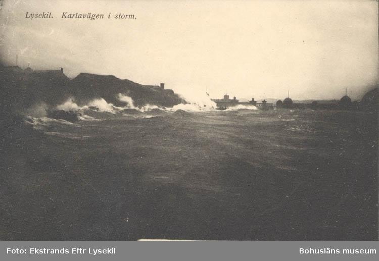"""Tryckt text på kortet: """"Lysekil, Karlavägen i storm."""" """"Albert Wallins Bokhandel."""""""