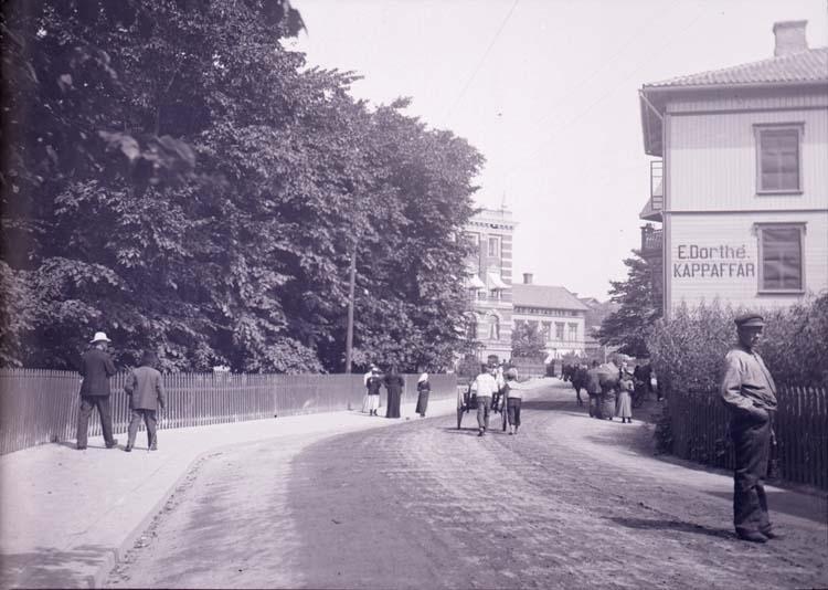 """Enligt text som medföljde bilden: """"Lysekil, Rosviksgatan vid Dorthe 13/7 1901."""""""