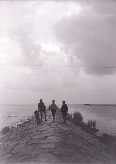 """Enligt text som medföljde bilden: """"Shelderviken, Stranden 31/8 08."""" ::"""