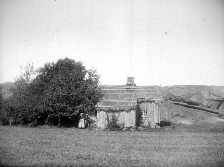 """Enligt text som medföljde bilden: """"En gammal koja med halmtak. Dalskogen vid Lysekil  3 Sept. 1899. Hugo Hallgren."""""""