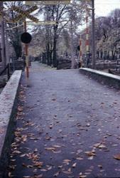 Uppfarten från Norra Drottninggatan mot Norra Kyrkogården