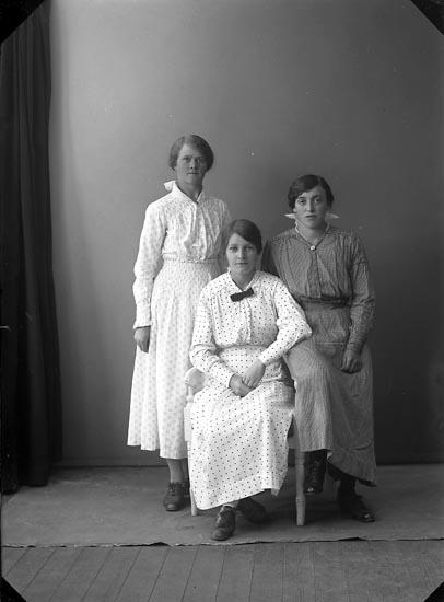 "Enligt fotografens journal nr 3 1916-1917: ""Svanberg, Sara Spekeröd""."