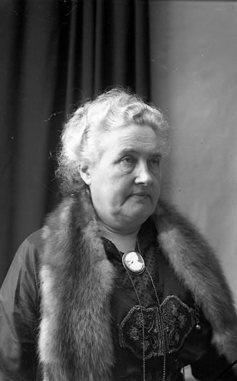 """Enligt fotografens journal Lyckorna 1909-1918: """"Fru Hansson Brejdablick Lyckorna""""."""