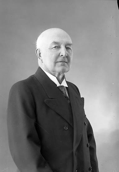 "Enligt fotografens journal nr 6 1930-1943: ""Röing, Tandl. John Stenungsund""."