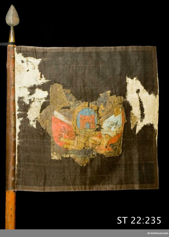 Standar av vit sidendamast med målad dekor på båda sidor. På ena sidan ett stadsvapen, möjligen för Nyslott, omgivet av en trofégrupp. På andra sidan Katarina II:s monogram.