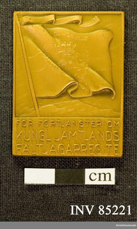 Grupp: M II  Kungliga Jämtlands fältjägarregementes förtjänstplakett i brons.
