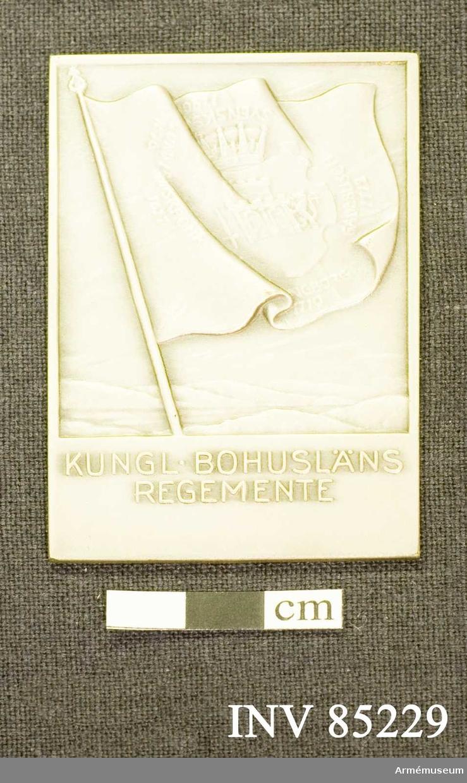 Grupp: M II.  Kungliga Bohusläns regementes stora förtjänstplakett i silver.