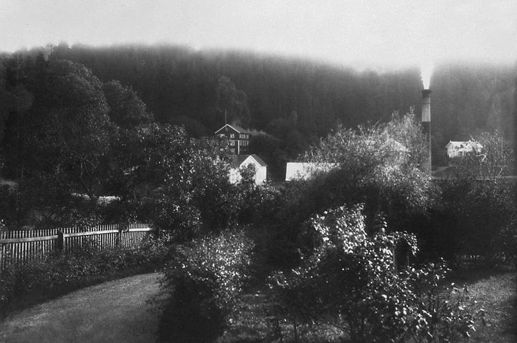 """Enligt tidigare notering: """"Trädgård nära varmbadhuset Gustafsberg."""""""