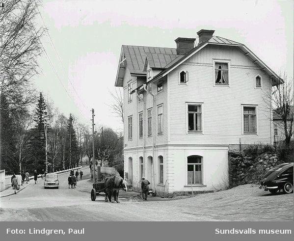 Fotograf Ester Näslunds fastighet på Nygatan 41, Södermalm. Den hade en så stor tomt att det gick att odla potatis och grösaker där. Ester föräldrar och tidvis en morbror bodde också där. Även Esters kompanjon fotografen Maria Kihlbaum var bosatt där.