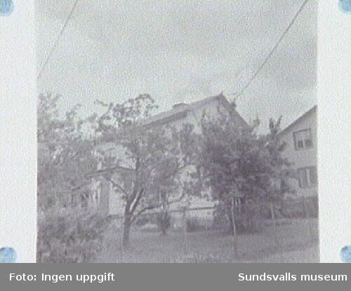 SuM-foto009493