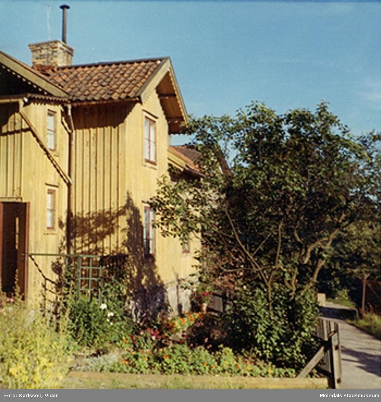 Ett gul hus med träd och buskar, år 1968. Bostadshuset Roten F25, Trädgården.