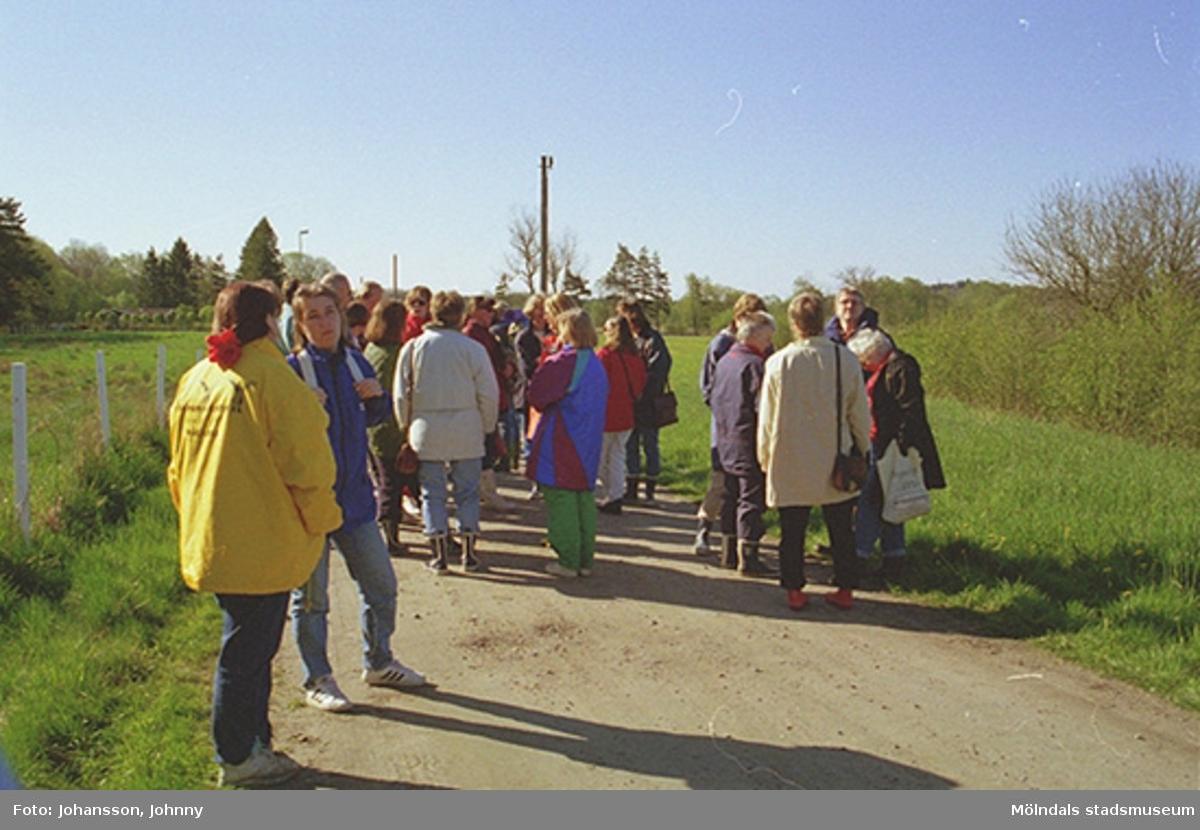 Anställda från Kultur och Fritid på förvaltningsdag vid Tulebo mosse, 1997.