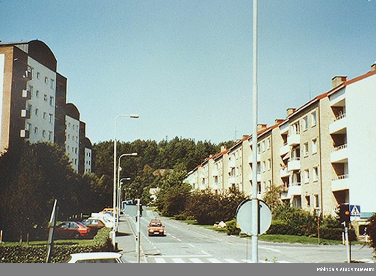 Gatan som leder åt höger är Biskopsbogatan. I bakgrunden ses Safjällets södra del. Okänt årtal.