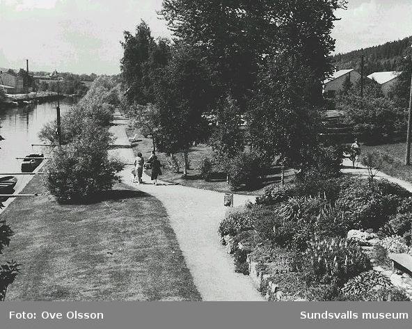 """Text: """"Strandpromenad efter Selångersån med kaffeserveringen Ågläntan och Sundsvalls Verkstäder skymtande i bakgrunden. Sett från Storbron""""."""
