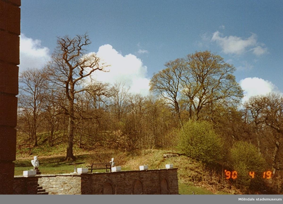 Till vänster ses en del av kejsarterrassen samt bakomliggande växtlighet på slottets norra sida.