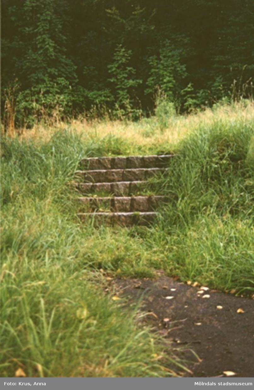 Kringmiljö. Igenvuxna trappsteg upp mot Solbacken.