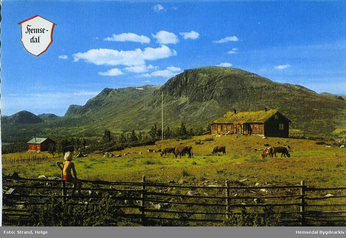 Skogshorn i Hemsedal