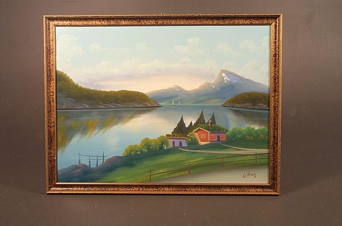 Landskap   -   fjord og fjell