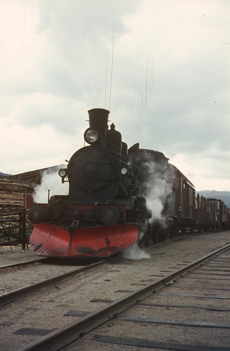 Godstog på Numedalsbanen på Flesberg stasjon, trukket av damplok 21b nr. 225.