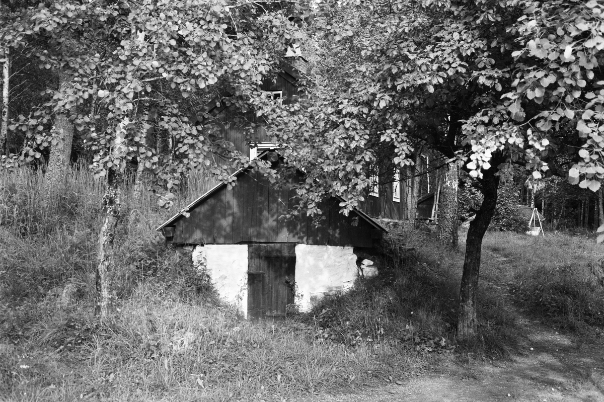 Källare, Västerberga 3:2 och 4:1, Rasbo socken, Uppland 1982