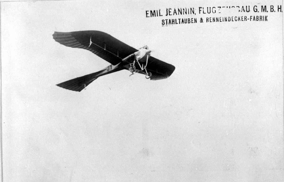 """luftfoto. Ett fly i lufta, Jeannin """"Taube""""."""